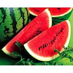 qua-dua-hau-watermelon